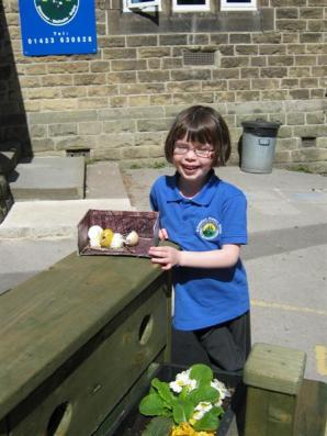 Easter Egg Comp (15)