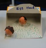 20130328-eggcomp2013-025