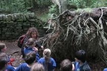 forestschools-006