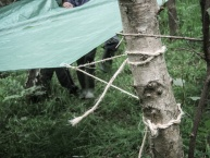 forestschools-019