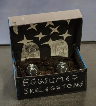 easter eggs 2014-003