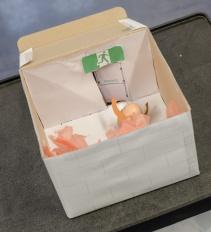 easter eggs 2014-039