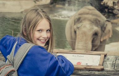 Chester Zoo 2015-049