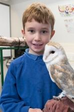 Owls001