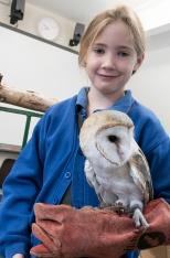 Owls004