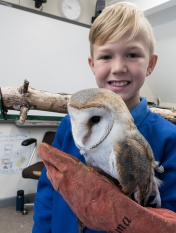 Owls013
