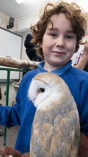 Owls018