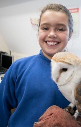 Owls032