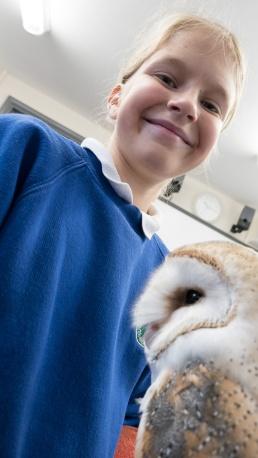 Owls050