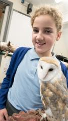 Owls052
