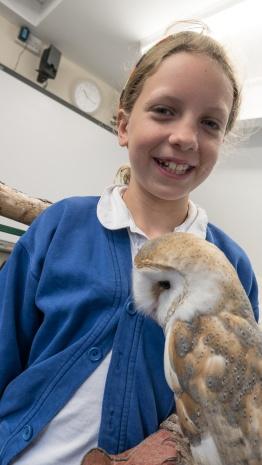 Owls057