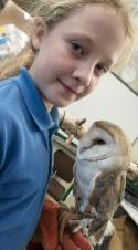 Owls060