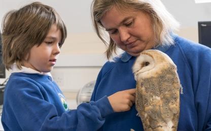 Owls103