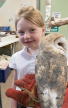 Owls140