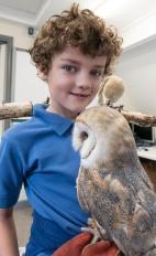 Owls143