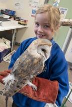 Owls148