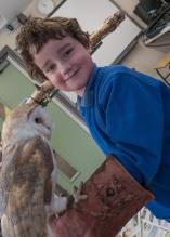 Owls175