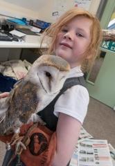 Owls179