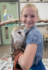 Owls191
