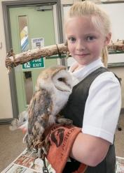 Owls198