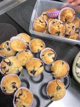 Blueberry muffins (1) (Small)